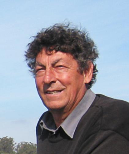 Petru Milinkovics beigesetzt